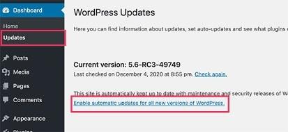 WordPressAutoUpdate5_6